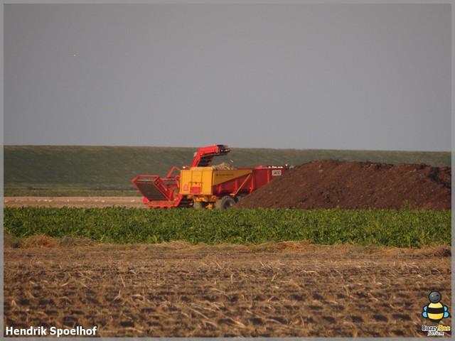 DSC02042-bbf Landbouw