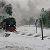 T03344 997247 Drei Annen Hohne - 20130303 Harz