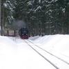 T03350 997245 Elend - 20130303 Harz