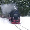 T03353 997245 Elend - 20130303 Harz