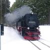 T03354 997245 Elend - 20130303 Harz