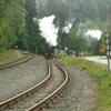 T03542 997235 Alexisbad - 20130919 Harz