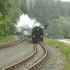 T03543 997235 Alexisbad - 20130919 Harz