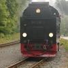T03545 997235 Alexisbad - 20130919 Harz