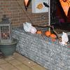 Halloween 2013 (3) - Halloween 2013 v. Borsselen...