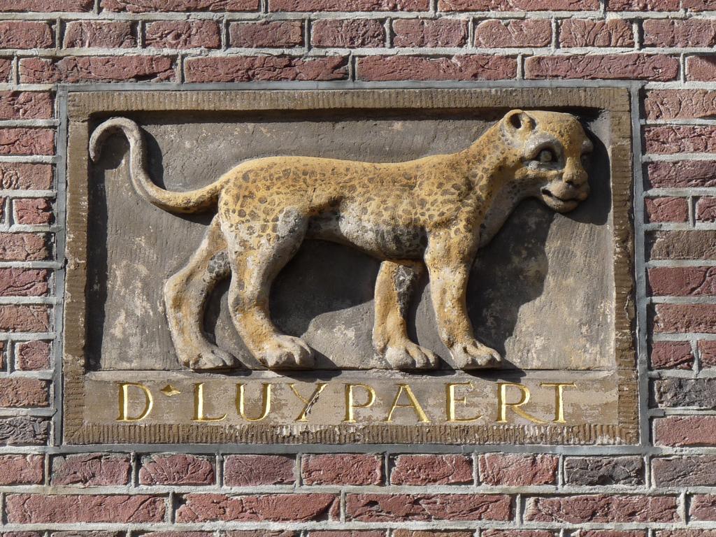 P1210498 - amsterdam