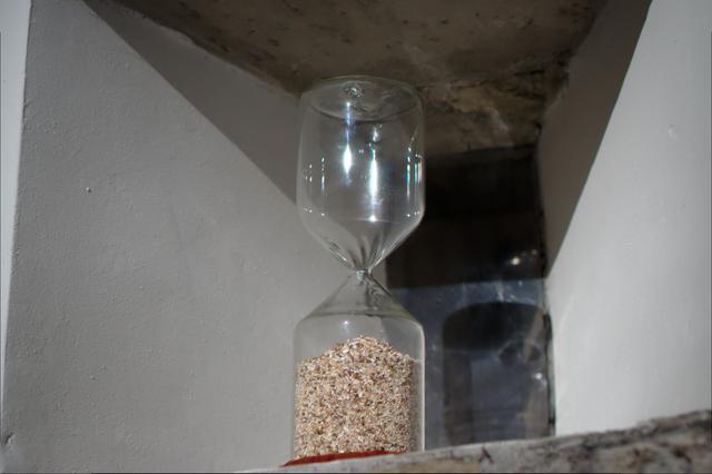 DSC1893 foto a cavolo dalla mostra di bergamo