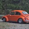 DSC-0779 - Beetle