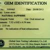 06-SAP-5080465-A - Certificate 09-12-13 500pxl