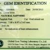 06-SAP-5080464-A - Certificate 09-12-13 500pxl