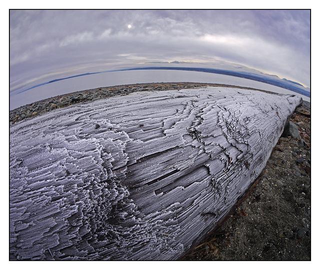 GooseSpit Frozen 01 Landscapes