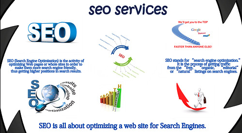 More Information About  Seo Services Picture Box