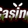 safari-casino - Picture Box
