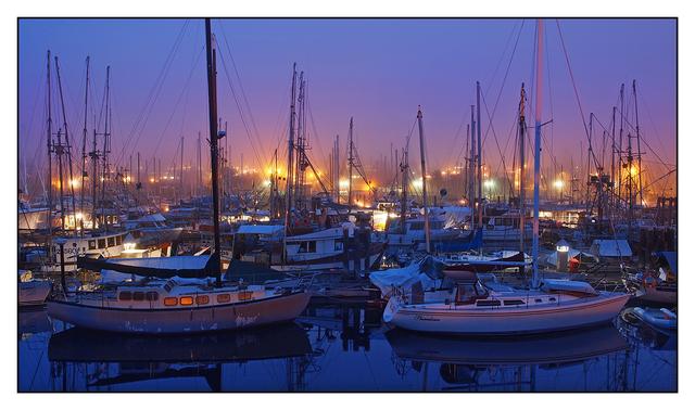 Comox Docks 2014 13 Comox Valley