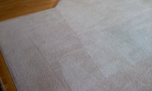 carpet cleaning dallas carpet cleaning dallas