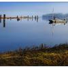 FannyBay Fog 2014 - Vancouver Island
