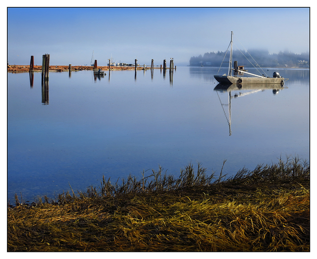 FannyBay Fog 2014 Vancouver Island