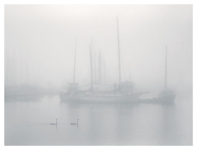 Deep Bay Mist Vancouver Island