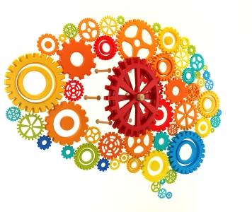 Best Brain Training Institute Picture Box