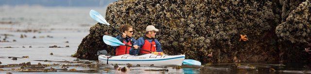 Image Island Sea Kayaking Tours