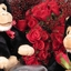 Valentine Chimps with Short... - Valentine Chimps with Short Stem Rose Buds
