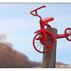 Red Tricycle 03 - Comox Valley