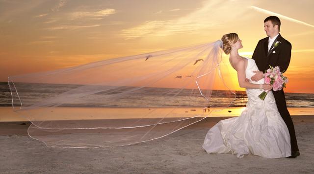 sarasota-wedding-photographer Picture Box