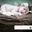 Artwork photography for you... - Picture Box