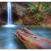 Mack Laing Nature Park 03 - Nature Images