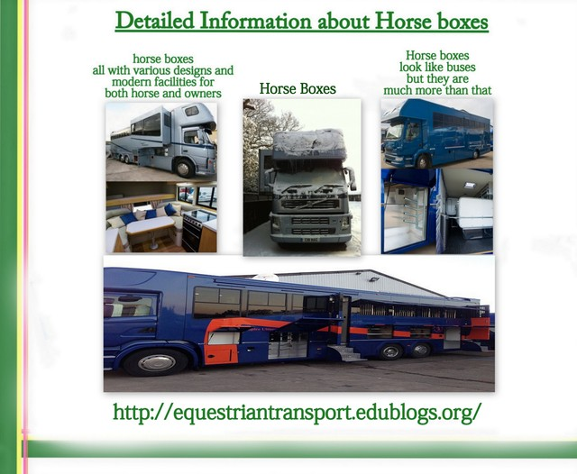 Only the Best Horse Boxes Are Best For Your Specia Picture Box