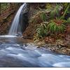 Mack Laing Nature Park 02 - Nature Images