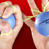 Handmaster Plus Hand Exerciser - Picture Box