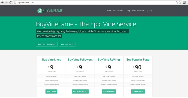 buy vine followers buy vine followers