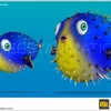3D Fish Render for Game 2 - 2d animation