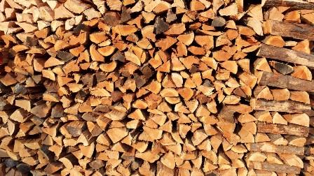 white birch firewood Premier Firewood Company