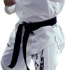 taekwondouniforms - Trade name of Taekwondo uni...