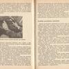 str 44-45 - Jeżdżę samochodem Wartburg