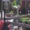 Tuin - Jonge mussen 29-04-14 2 - In de tuin 2014