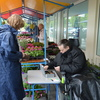 plantjesmarkt 2014 (5) - plantjesmarkt 2014