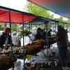 plantjesmarkt 2014