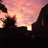 Wolkenkleuren vanuit de ach... - In de tuin 2014