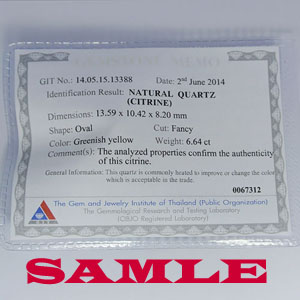 CIT Certificate 09-12-13 300pxl