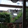 Tuin - Vlaamse Gaai 02-06-1... - In de tuin 2014