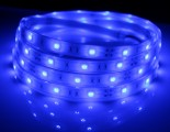5050 30 ip68 led tape-2 2 led strip light  http://www.dealightstore.com/led-lights.html