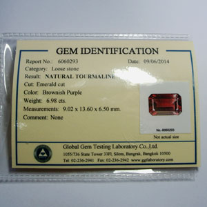 TO-CERTI-6060293 25-11-13 CERTIFICATES 300PX