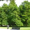 P1010584 - Vondelpark