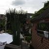 Tuin - Hagen snoeien 25-07-... - In de tuin 2014