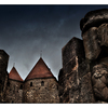 Carcassonne Lady - France