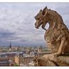 Notre Dame Chimera - France