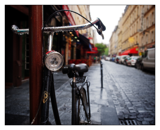 Wet Parisian Bike France